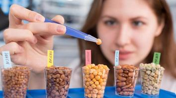 girl in the laboratory of food quality tests