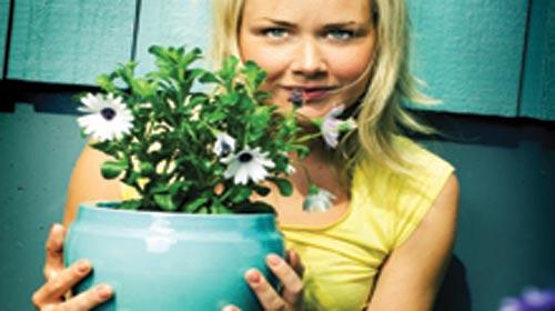 Gardening voucher